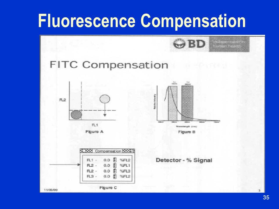 34 Fluorescence Overlap