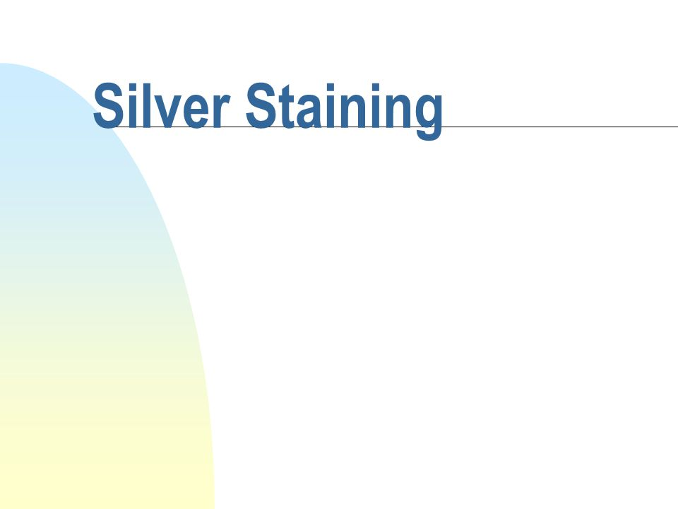 Silver Staining