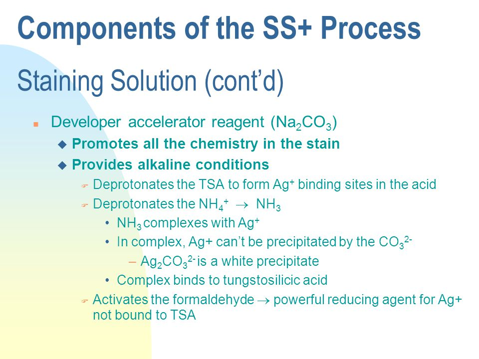 Components of the SS+ Process Staining Solution (cont'd) n Developer accelerator reagent (Na 2 CO 3 ) u Promotes all the chemistry in the stain u Provides alkaline conditions F Deprotonates the TSA to form Ag + binding sites in the acid F Deprotonates the NH 4 +  NH 3 NH 3 complexes with Ag + In complex, Ag+ can't be precipitated by the CO 3 2- –Ag 2 CO 3 2- is a white precipitate Complex binds to tungstosilicic acid F Activates the formaldehyde  powerful reducing agent for Ag+ not bound to TSA