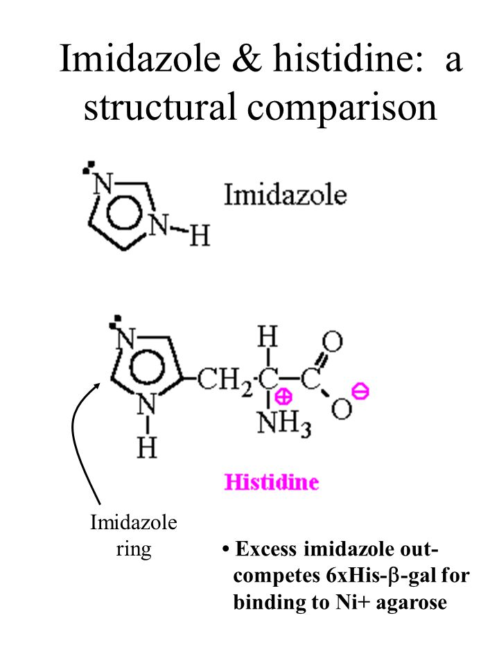 Imidazole ring Imidazole & histidine: a structural comparison Excess imidazole out- competes 6xHis-  -gal for binding to Ni+ agarose