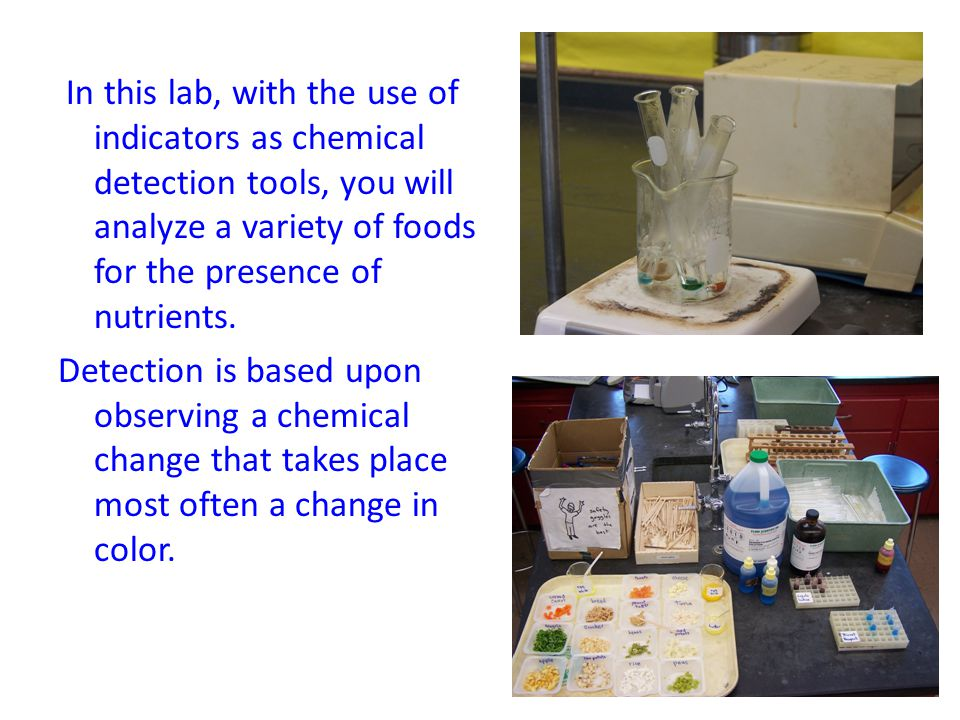 In this lab, with the use of indicators as chemical detection tools, you will analyze a variety of foods for the presence of nutrients. Detection is b