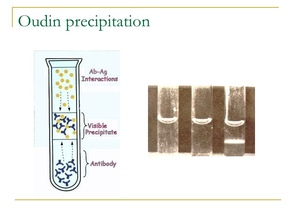 Oudin precipitation
