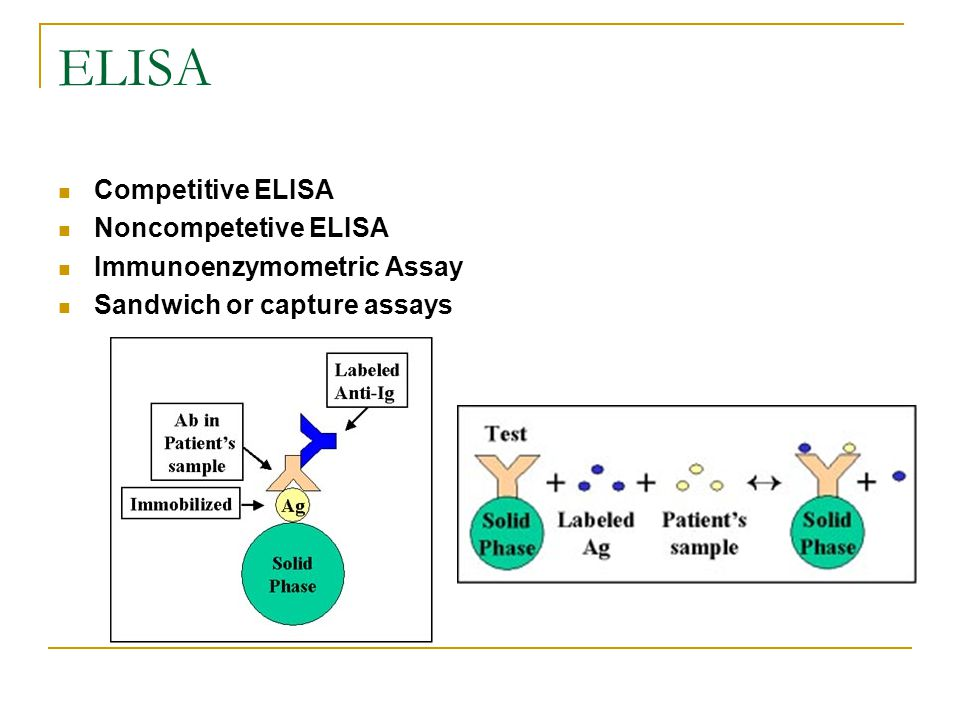 ELISA Competitive ELISA Noncompetetive ELISA Immunoenzymometric Assay Sandwich or capture assays