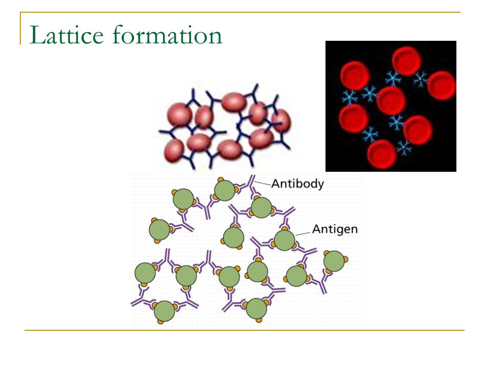 Lattice formation