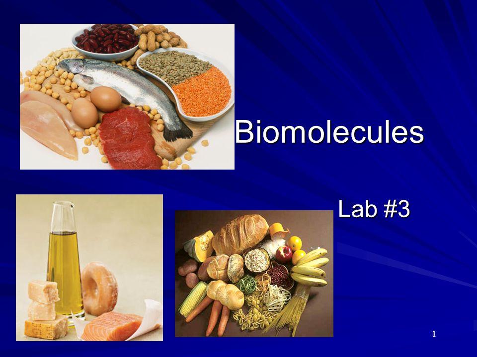 1 Biomolecules Lab #3