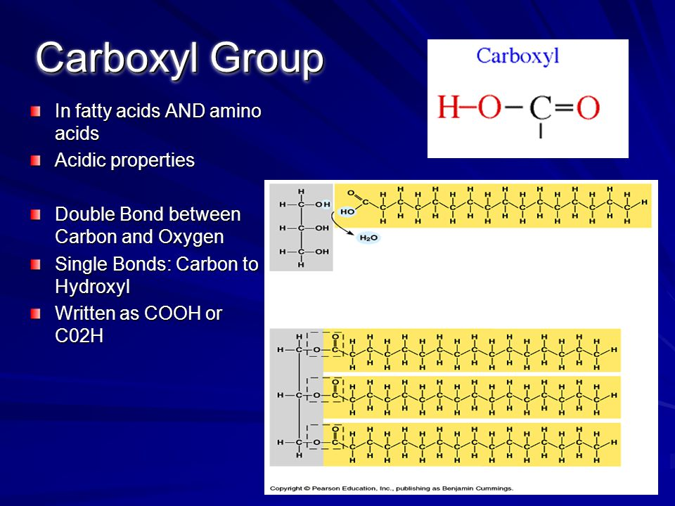 In fatty acids AND amino acids Acidic properties Double Bond between Carbon and Oxygen Single Bonds: Carbon to Hydroxyl Written as COOH or C02H Carbox
