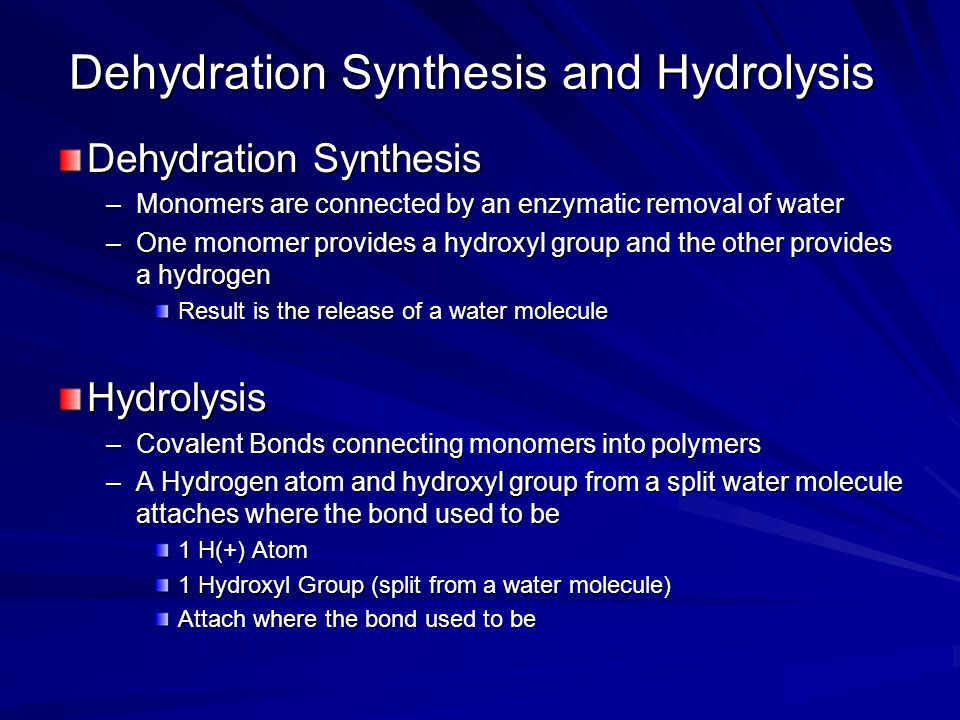 Dehydration Synthesis and Hydrolysis Dehydration Synthesis –Monomers are connected by an enzymatic removal of water –One monomer provides a hydroxyl g