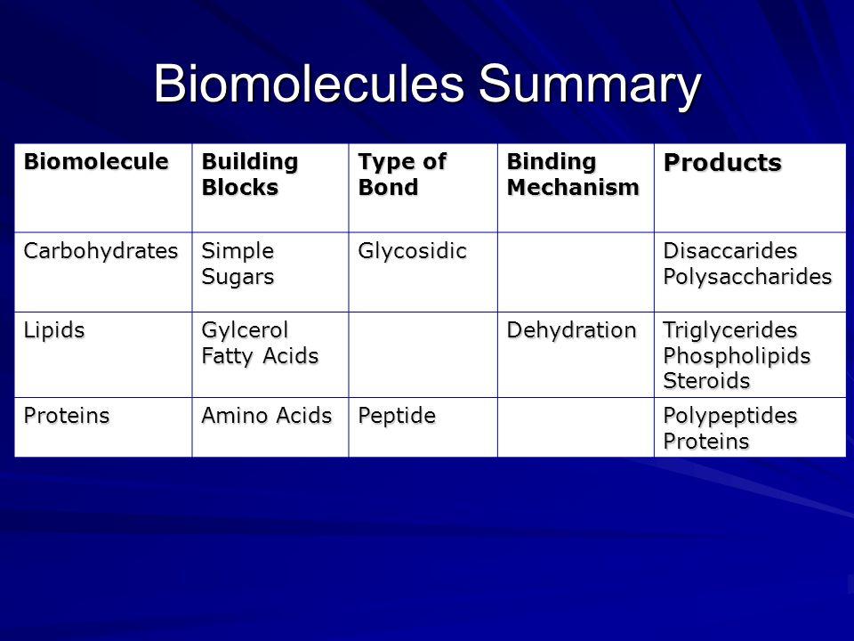 Biomolecules Summary Biomolecule Building Blocks Type of Bond Binding Mechanism Products Carbohydrates Simple Sugars GlycosidicDisaccaridesPolysacchar