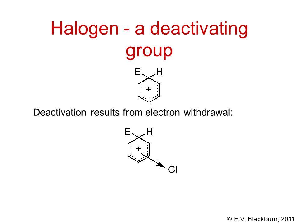 © E.V. Blackburn, 2011 Deactivation results from electron withdrawal: Halogen - a deactivating group