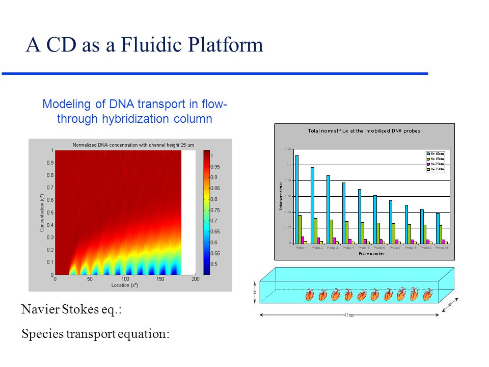 Navier Stokes eq.: Species transport equation: Modeling of DNA transport in flow- through hybridization column A CD as a Fluidic Platform