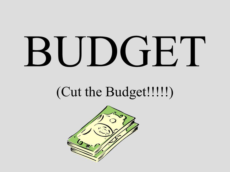 BUDGET (Cut the Budget!!!!!)