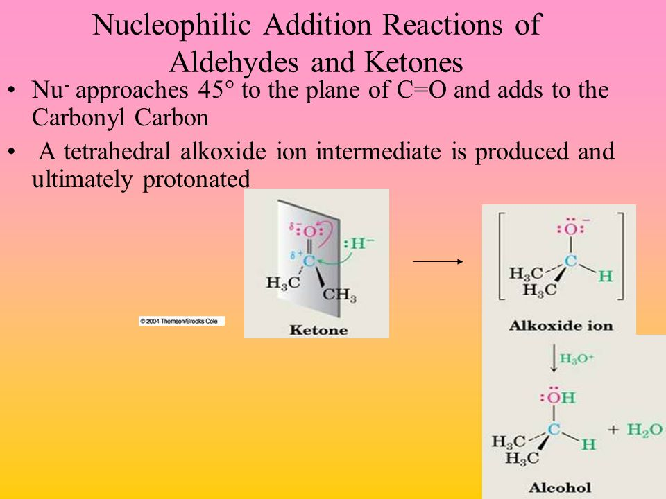 Nucleophilic Addition Reactions of Aldehydes and Ketones Nu - approaches 45° to the plane of C=O and adds to the Carbonyl Carbon A tetrahedral alkoxid