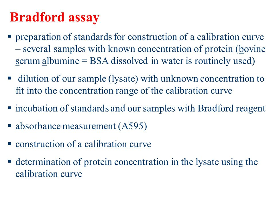  preparation of standards for construction of a calibration curve – several samples with known concentration of protein (bovine serum albumine = BSA dissolved in water is routinely used)  dilution of our sample (lysate) with unknown concentration to fit into the concentration range of the calibration curve  incubation of standards and our samples with Bradford reagent  absorbance measurement (A595)  construction of a calibration curve  determination of protein concentration in the lysate using the calibration curve Bradford assay