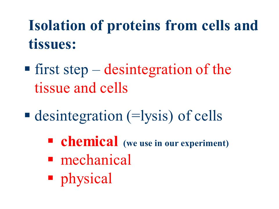 Isolation of proteins from cells and tissues:  chemical (we use in our experiment)  mechanical  physical  first step – desintegration of the tissue and cells  desintegration (=lysis) of cells