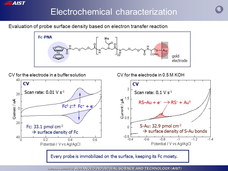 Evaluation of probe surface density based on electron transfer reaction Fc-PNA gold electrode CV for the electrode in 0.5 M KOH CV Scan rate: 0.1 V s -1 S-Au: 32.9 pmol cm -2  surface density of S-Au bonds RS–Au + e – RS – + Au 0 CV for the electrode in a buffer solution CV Scan rate: 0.01 V s -1 Fc: 33.1 pmol cm -2  surface density of Fc Fc 0 Fc + + e - Every probe is immobilized on the surface, keeping its Fc moiety.