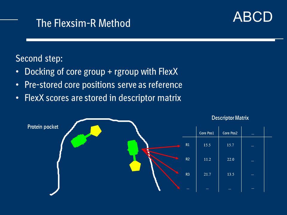 ABCD The Flexsim-R Method Second step: Docking of core group + rgroup with FlexX Pre-stored core positions serve as reference FlexX scores are stored in descriptor matrix Core Pos1 13.5 22.0 Core Pos2 15.7 R1 R2 R3...
