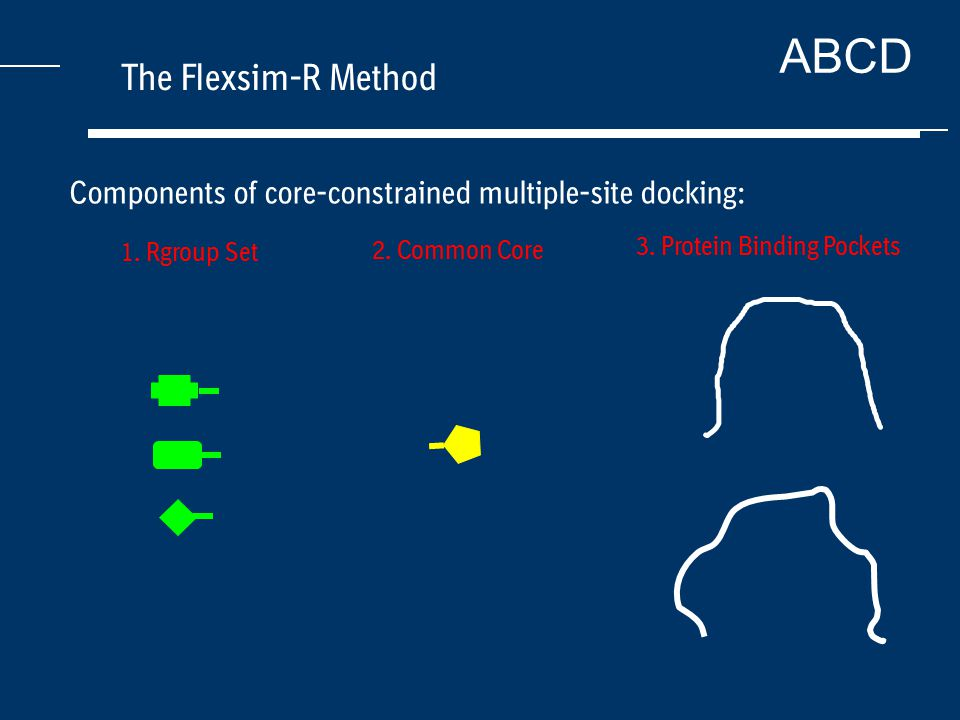 ABCD The Flexsim-R Method Components of core-constrained multiple-site docking: 1.