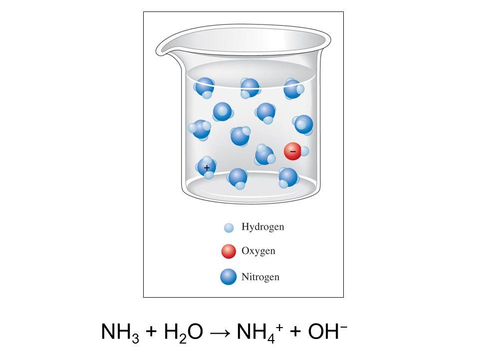 NH 3 + H 2 O → NH 4 + + OH −