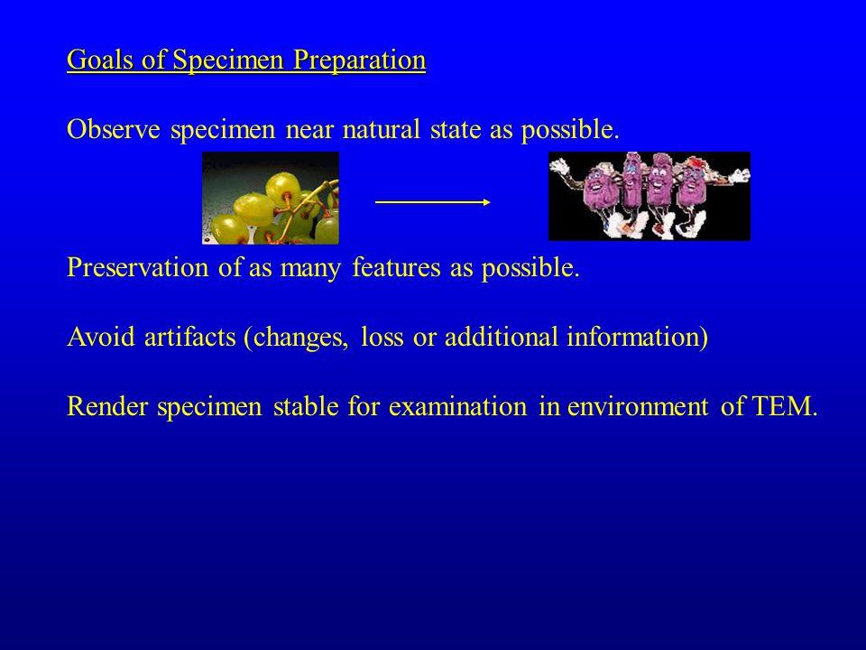 Goals of Specimen Preparation Observe specimen near natural state as possible.