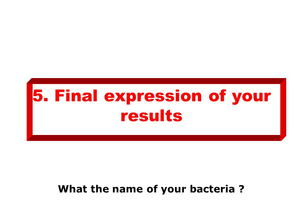 5. Final expression of your results What the name of your bacteria ?
