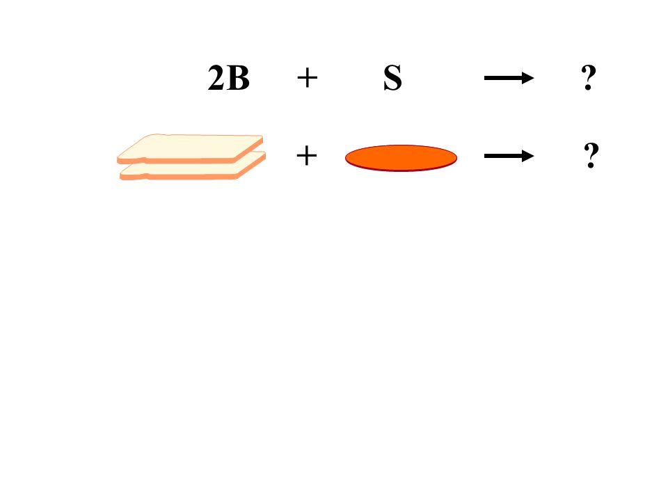2B + S