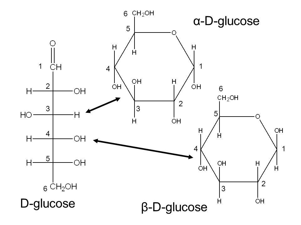 D-glucose α-D-glucose β-D-glucose 1 2 3 4 5 6 1 1 2 2 3 3 4 4 5 5 6 6