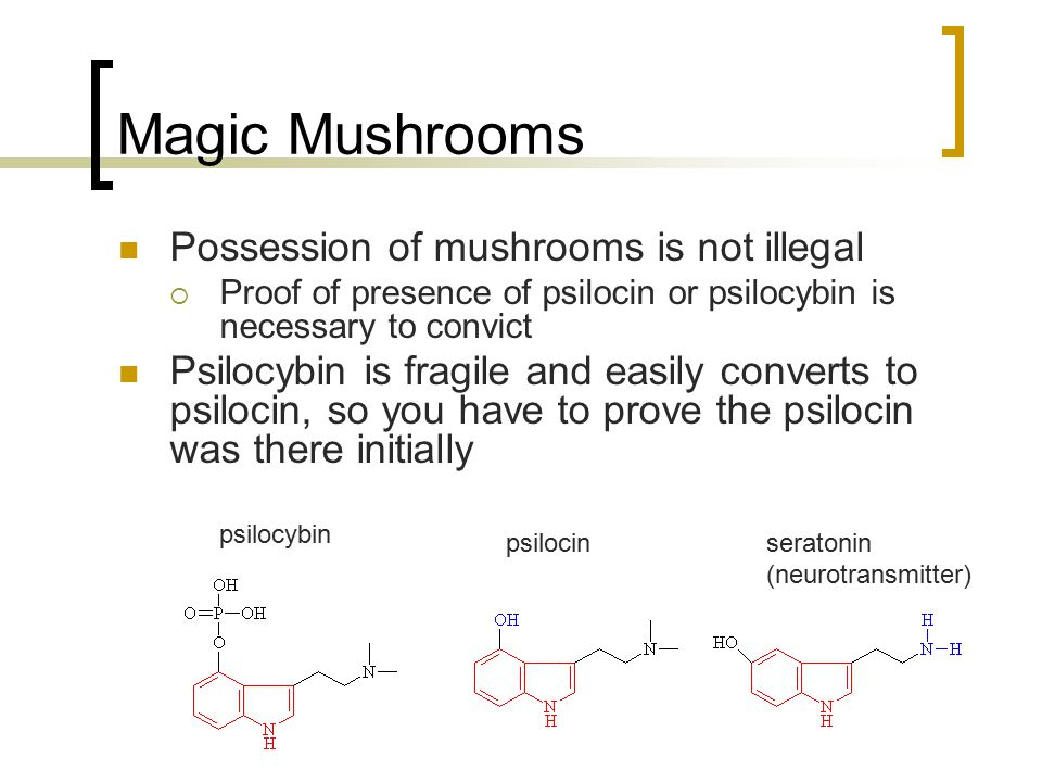 Magic Mushrooms Possession of mushrooms is not illegal  Proof of presence of psilocin or psilocybin is necessary to convict Psilocybin is fragile and