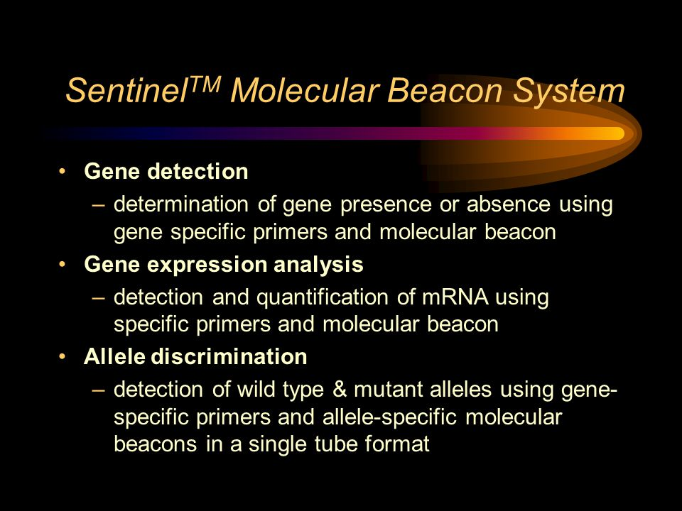 Sentinel TM Molecular Beacon System Gene detection –determination of gene presence or absence using gene specific primers and molecular beacon Gene expression analysis –detection and quantification of mRNA using specific primers and molecular beacon Allele discrimination –detection of wild type & mutant alleles using gene- specific primers and allele-specific molecular beacons in a single tube format