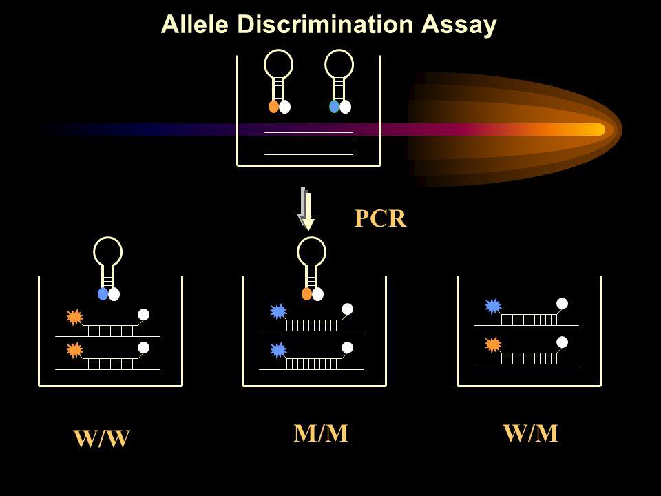 W/W W/MM/M PCR Allele Discrimination Assay