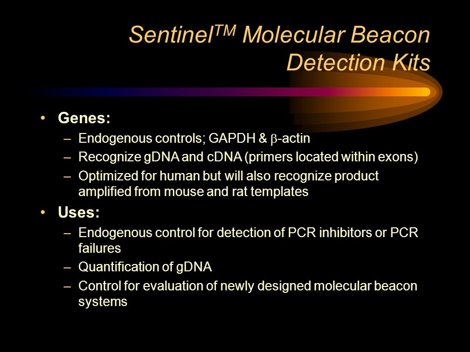 Sentinel TM Molecular Beacon Detection Kits Genes: –Endogenous controls; GAPDH &  -actin –Recognize gDNA and cDNA (primers located within exons) –Optimized for human but will also recognize product amplified from mouse and rat templates Uses: –Endogenous control for detection of PCR inhibitors or PCR failures –Quantification of gDNA –Control for evaluation of newly designed molecular beacon systems