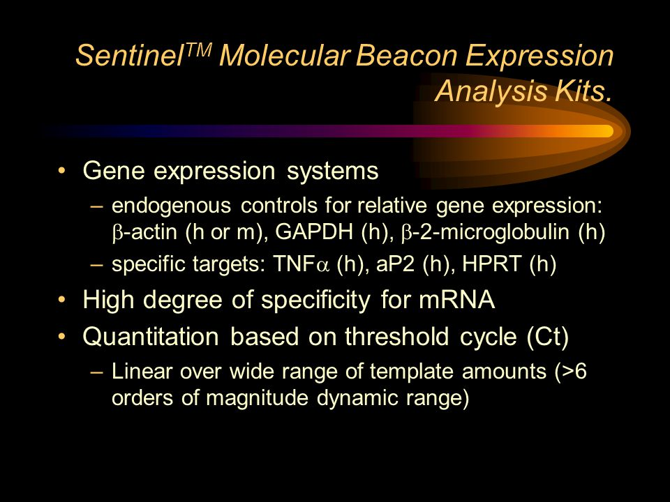 Sentinel TM Molecular Beacon Expression Analysis Kits. Gene expression systems –endogenous controls for relative gene expression:  -actin (h or m), G