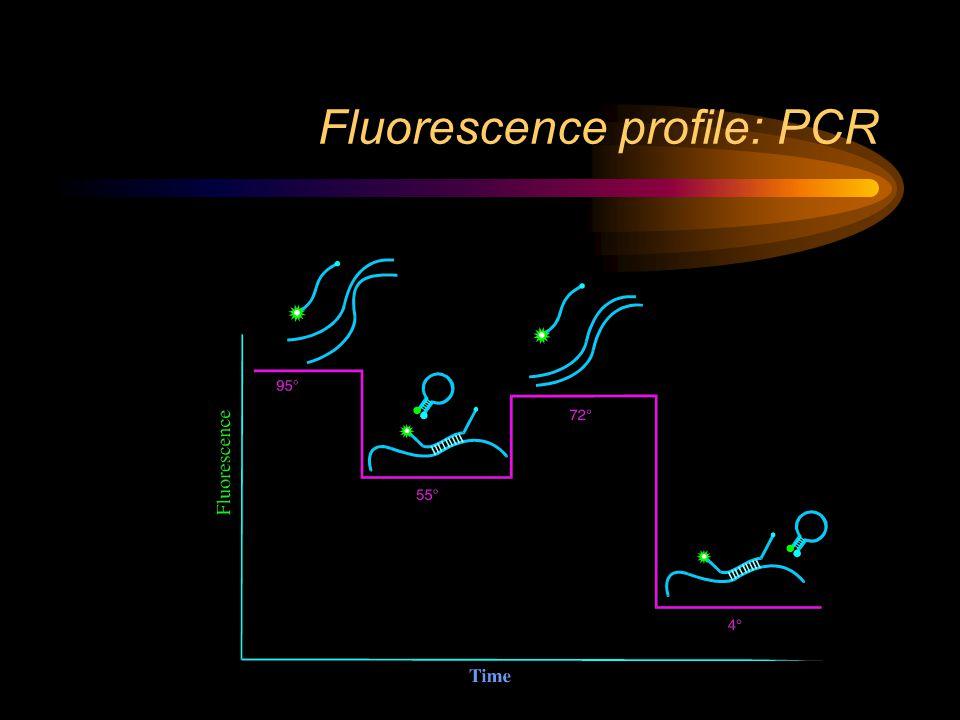Fluorescence profile: PCR