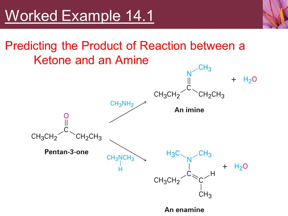 Worked Example 14.1 Predicting the Product of Reaction between a Ketone and an Amine