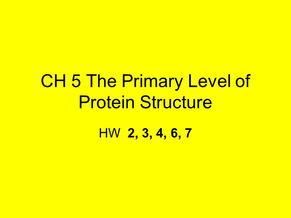 CH 5 The Primary Level of Protein Structure HW 2, 3, 4, 6, 7