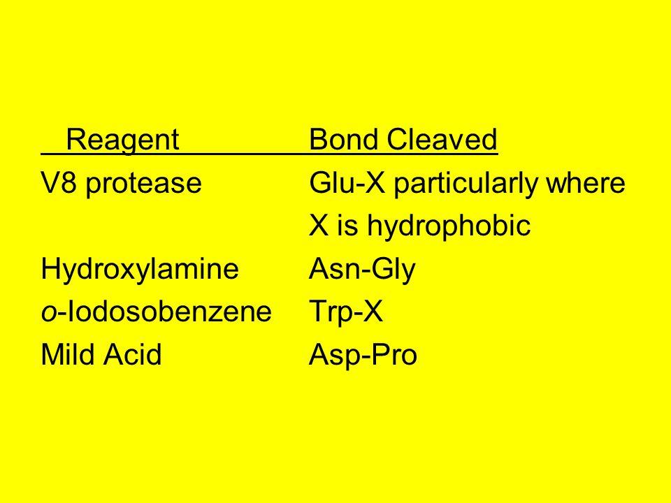 ReagentBond Cleaved V8 proteaseGlu-X particularly where X is hydrophobic HydroxylamineAsn-Gly o-IodosobenzeneTrp-X Mild AcidAsp-Pro