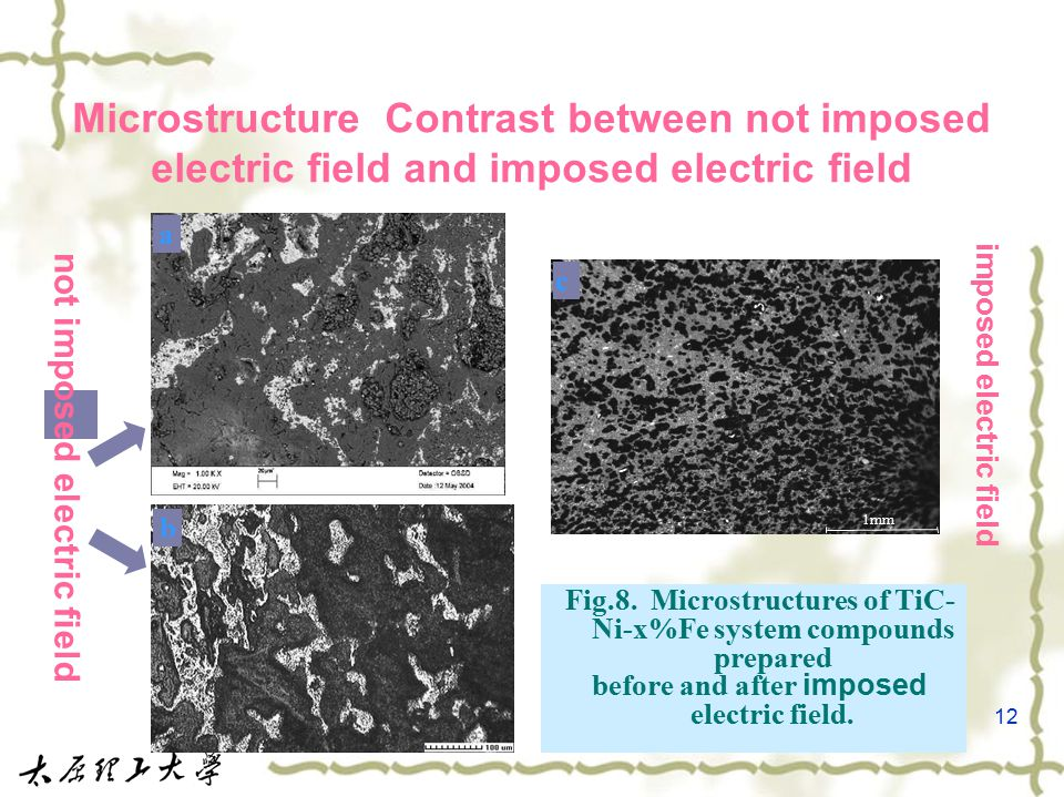 12 Microstructure Contrast between not imposed electric field and imposed electric field a 1mm c b Fig.8.