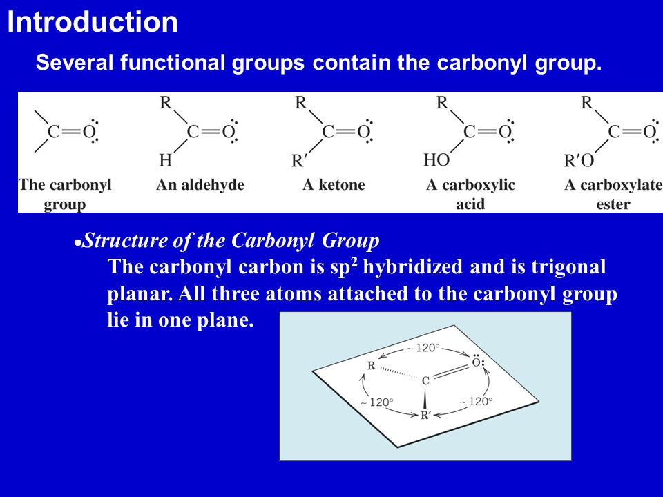 Introduction Several functional groups contain the carbonyl group.