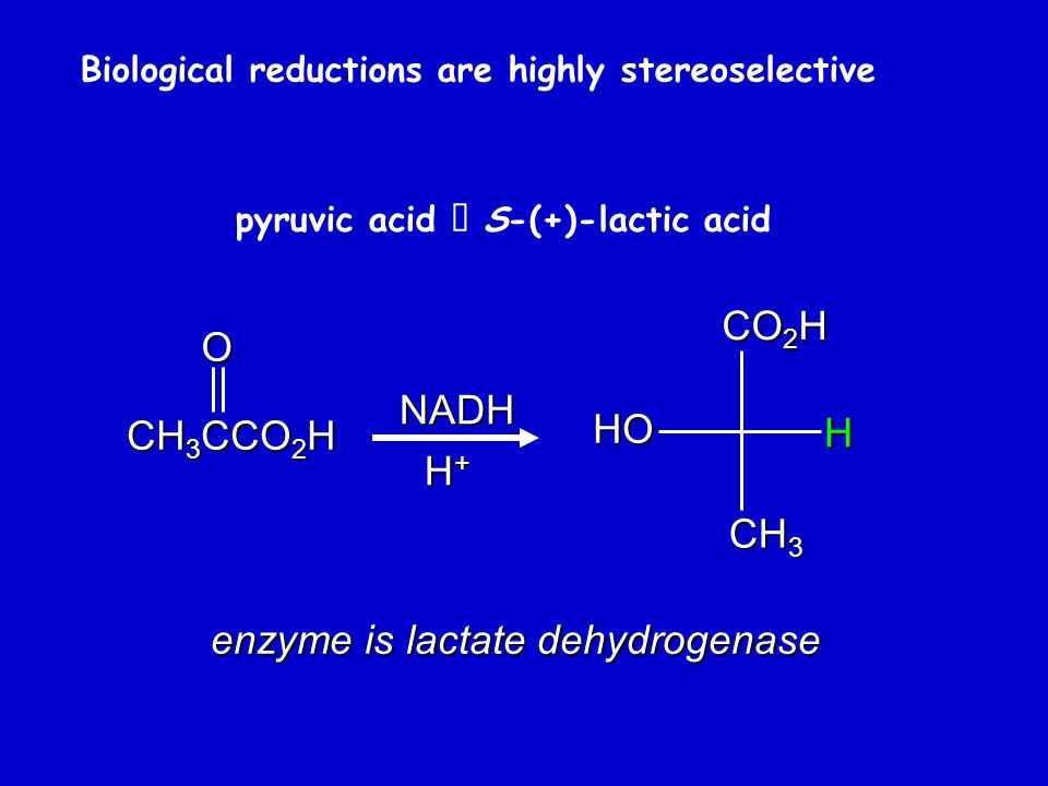 Biological reductions are highly stereoselective pyruvic acid  S-(+)-lactic acidO CH 3 CCO 2 H NADH H+H+H+H+ enzyme is lactate dehydrogenase CO 2 H HO H CH 3
