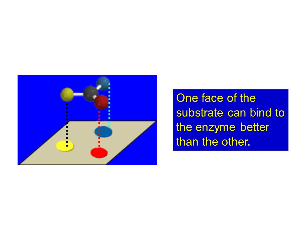One face of the substrate can bind to the enzyme better than the other.