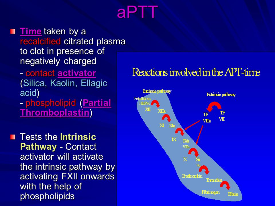 aPTT Time taken by a recalcified citrated plasma to clot in presence of negatively charged - contact activator (Silica, Kaolin, Ellagic acid) - phospholipid (Partial Thromboplastin) Tests the Intrinsic Pathway - Contact activator will activate the intrinsic pathway by activating FXII onwards with the help of phospholipids