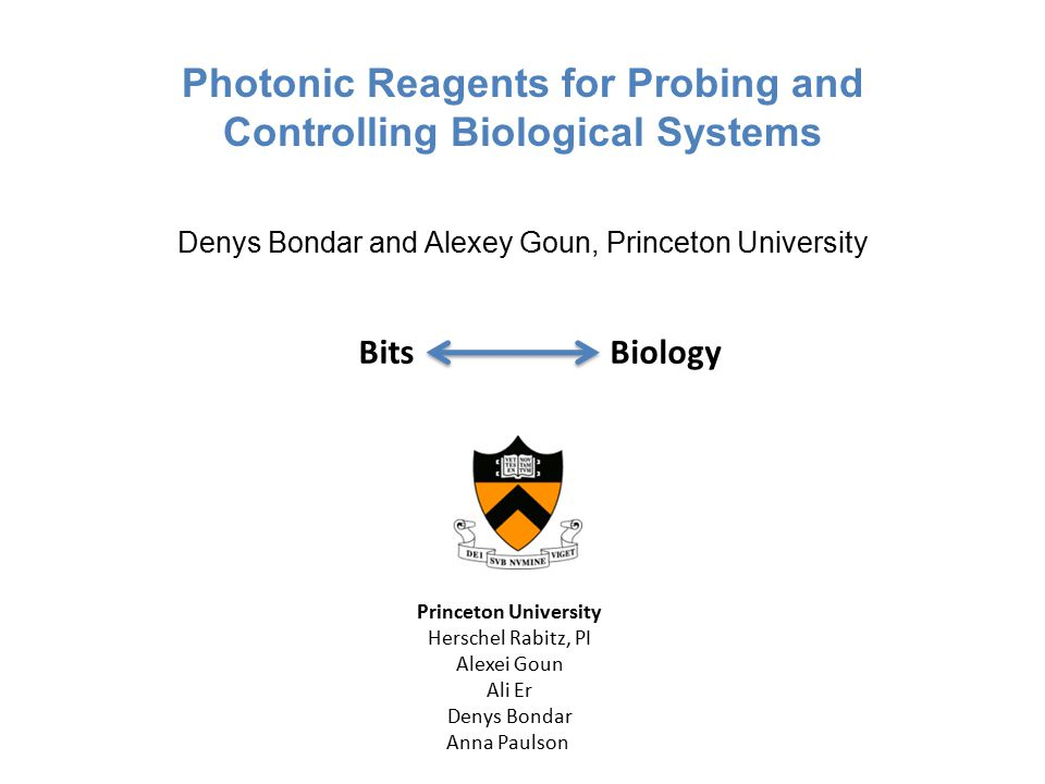 Photonic Reagents for Probing and Controlling Biological Systems Denys Bondar and Alexey Goun, Princeton University Princeton University Herschel Rabitz, PI Alexei Goun Ali Er Denys Bondar Anna Paulson Bits Biology
