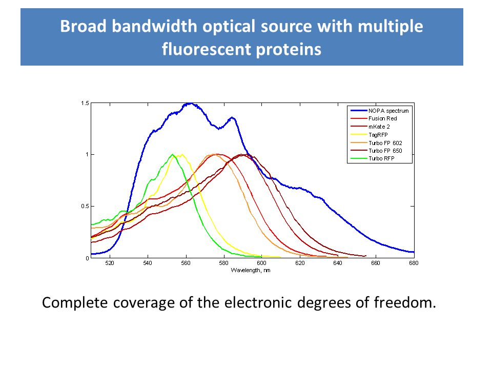 Broad bandwidth optical source with multiple fluorescent proteins Complete coverage of the electronic degrees of freedom.