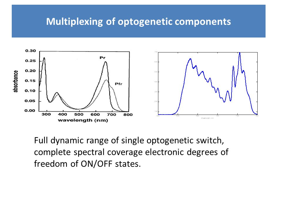 Multiplexing of optogenetic components Full dynamic range of single optogenetic switch, complete spectral coverage electronic degrees of freedom of ON/OFF states.