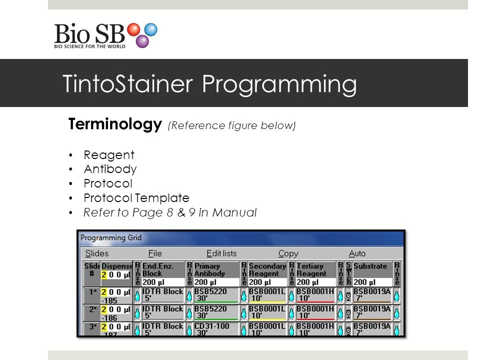 TintoStainer Programming Terminology (Reference figure below) Reagent Antibody Protocol Protocol Template Refer to Page 8 & 9 in Manual