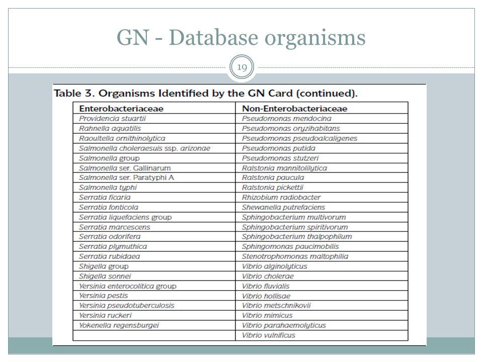 GN - Database organisms 19
