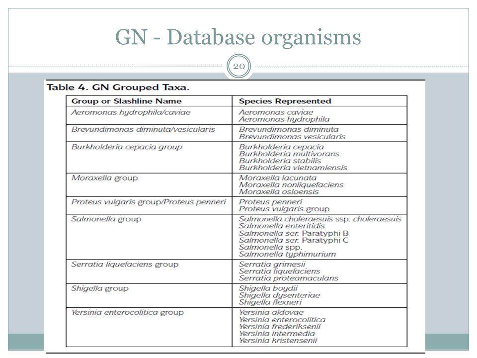 GN - Database organisms 20