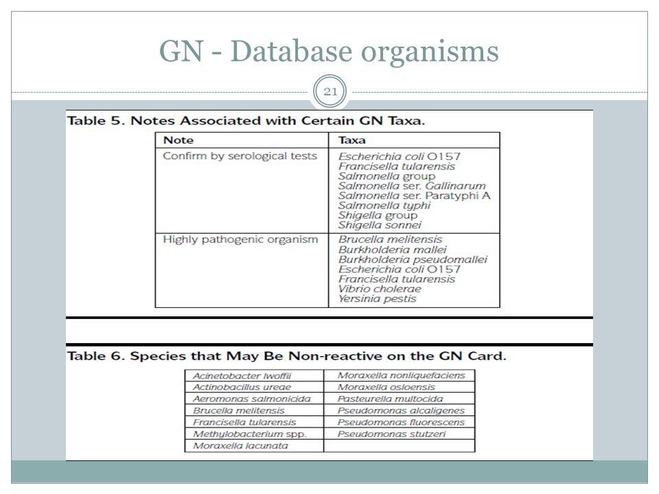 GN - Database organisms 21