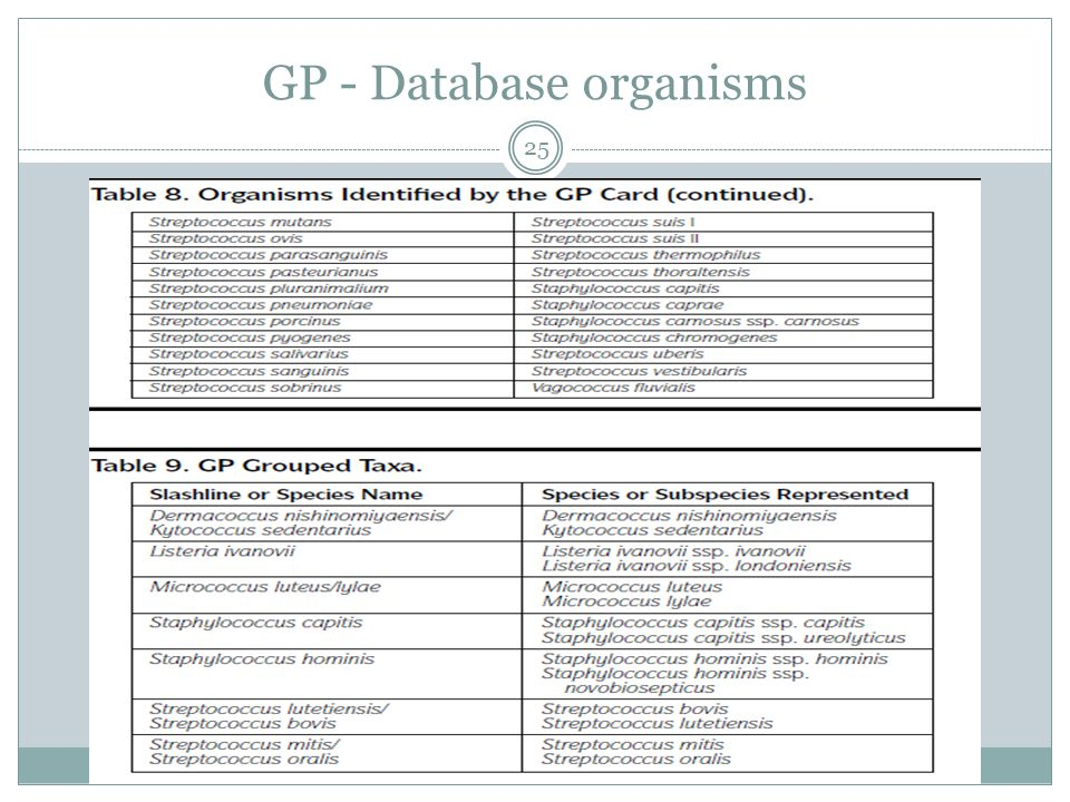 GP - Database organisms 25