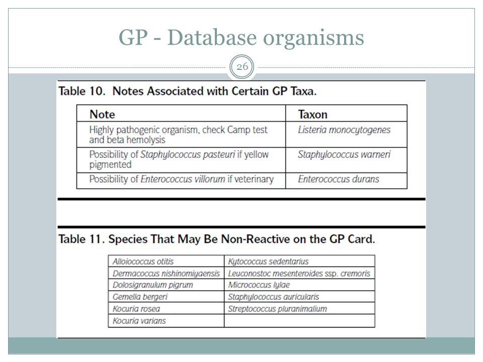 GP - Database organisms 26