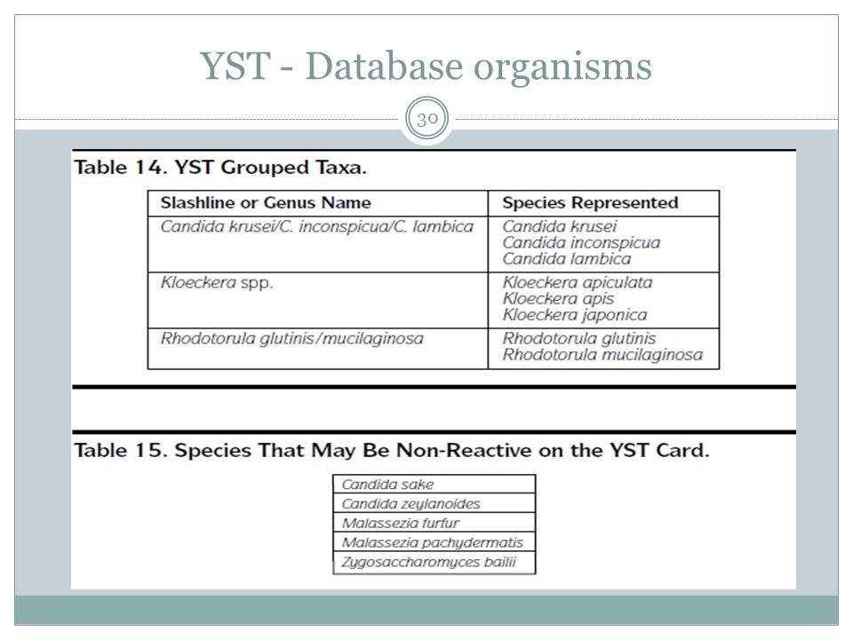 YST - Database organisms 30